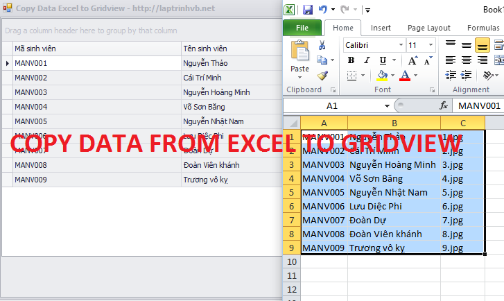 Copy data from excel to gridview devexpress