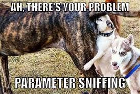 sqlserver parameter sniffing store procedure