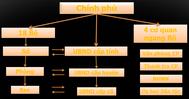 [DATABASE] Cung cấp cơ sở dữ liệu các cơ sở hành chính Việt Nam (thành phố, tỉnh, huyện, phường, xã...)  Excel file, Sqlite và Mysql