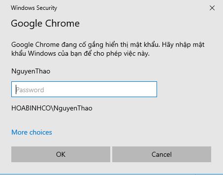 WindowsCredential_chrome