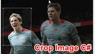 [C#] Hướng dẫn Crop Image làm hình thẻ 3x4 winform