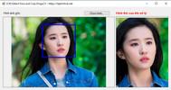 [C#] Hướng dẫn Detect Face and Crop Image sử dụng EmguCV trong lập trình Winform