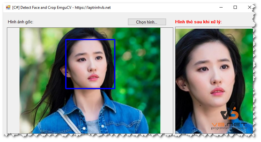 detect_face_and_crop_demo
