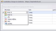 [DEVEXPRESS] Hướng dẫn sử dụng Combobox Image trong GridView