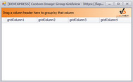 [DEVEXPRESS] Hướng dẫn custom image group panel GridView