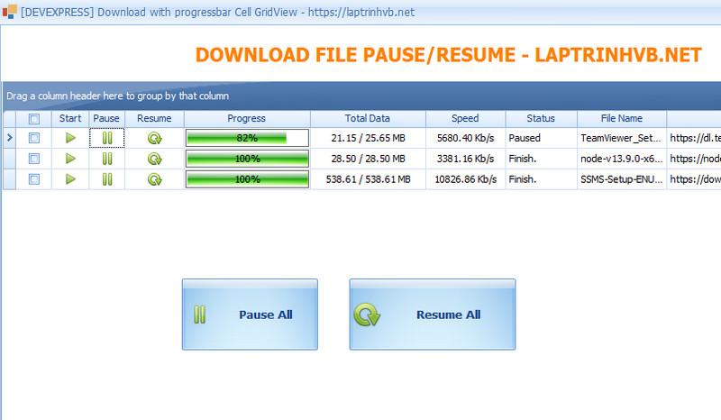 pause_resume_demo