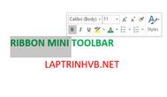 [DEVEXPRESS] Hướng dẫn sử dụng Ribbon Mini Toolbar giống Microsoft Word trong RichEditControl