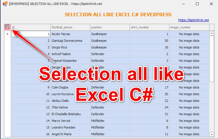 [DEVEXPRESS] Hướng dẫn click chọn tất cả dữ liệu GridView giống Microsoft Excel