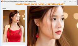 [DEVEXPRESS] Hướng dẫn phóng lớn zoom image trong PictureEdit C#