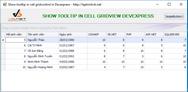 Hướng dẫn sử dụng tooltip khi rê chuột vào cell của grid view devexpress