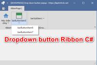 [DEVEXPRESS] Thiết kế Dropdown ButtonBarItem trên Form Ribbon