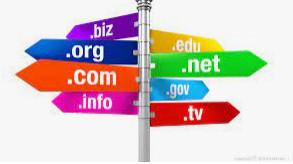 [C#] Xem thông tin đăng ký tên miền Who is Domain